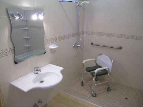 Haltegriff Dusche Behindertengerecht : Rollstuhlgerechte Duschen mit Haltegriffen