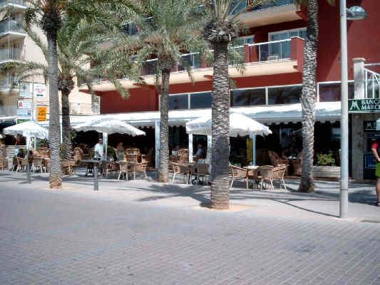 Haltegriff Dusche Behindertengerecht : Direkt an der Strandpromenade der Playa de Palma. Restaurants, Bars